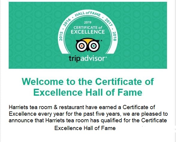 trip-advisor_2019-announce-certificate-excellence 1
